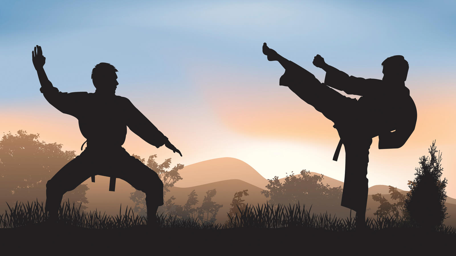 Martial Arts and Psychotherapy